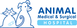 Animal Medical & Surgical Hospital
